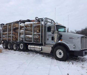 Custom Built Log Bed
